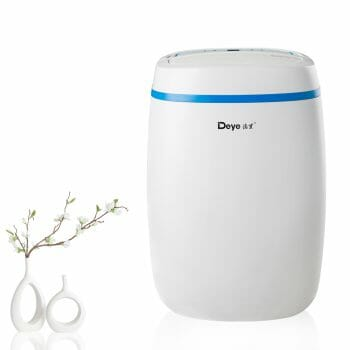 best dehumidifier for cold room