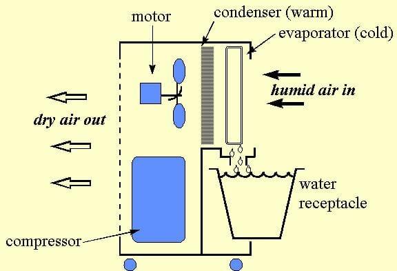 How to buy a dehumidifier